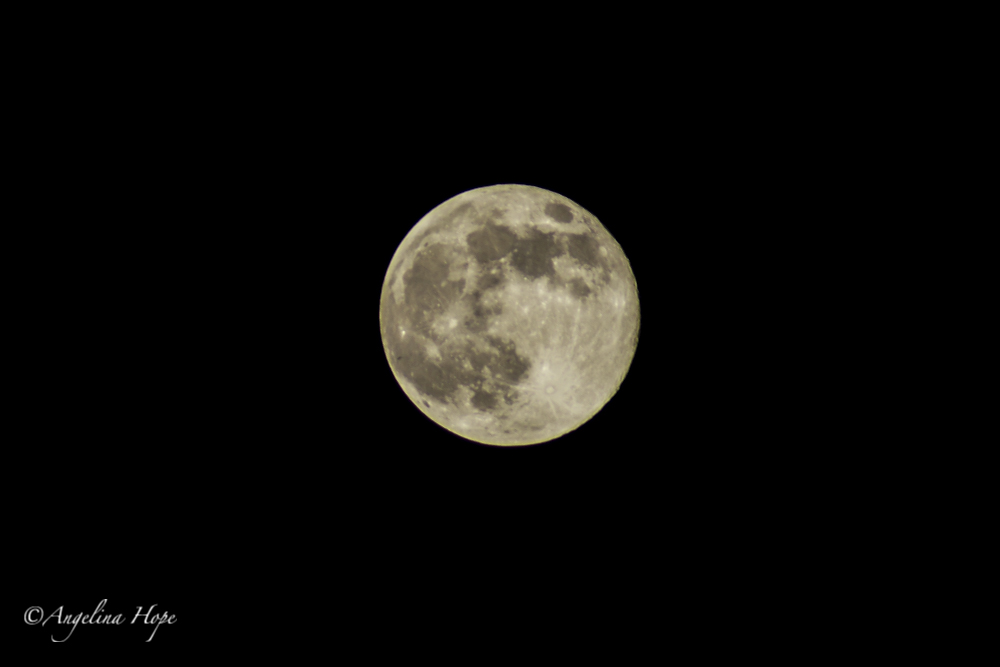 Super Moon August 10, 2014